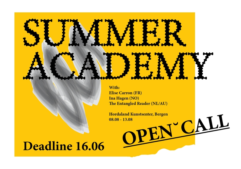 graphic image for Hordaland summer academy