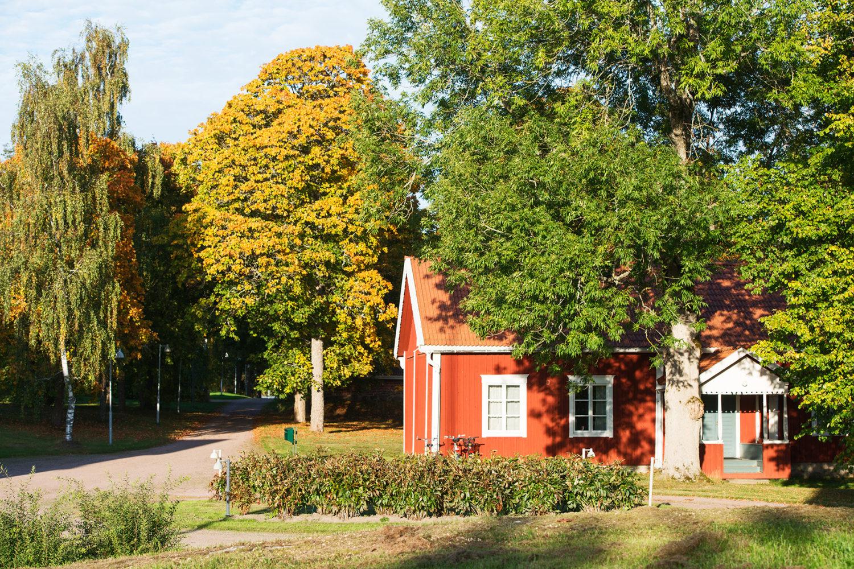 Helsinki Saari