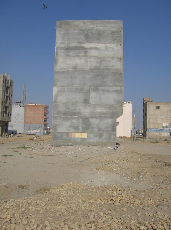 Sana Mustafa Ali, Build, 2010