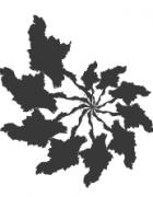 myanmartevolution logo