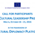 Global Cultural Leadership Programme call | EXTENDED DEADLINE