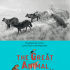 Paris | The Great Animal Orchestra