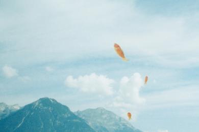 14th Lyon Biennale - Floating Worlds